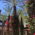 Live In The Heart of North Scottsdale's Kierland