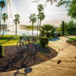 Discover the Community of Fountain Hills